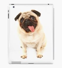Mops iPad-Hülle & Klebefolie