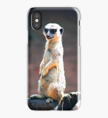 On The Lookout iPhone Case