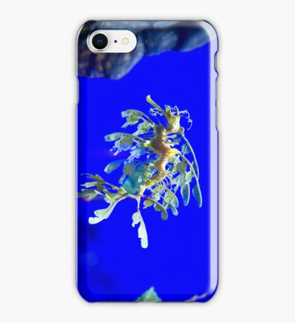 Leafy Seadragon iPhone Case/Skin