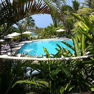 Fijian Poolside by lili-feline