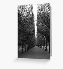 thunder trees Greeting Card