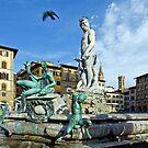 Fountain of Neptune and a Bird by Aleksandar Topalovic