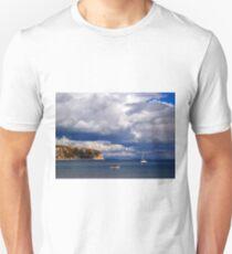 Ballard Down Unisex T-Shirt