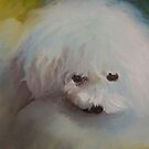 Angel My Maltese Puppy by Noel78