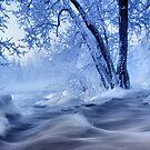 winter wonders by Kari Liimatainen