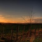 Sunset - Winchester by NeilAlderney