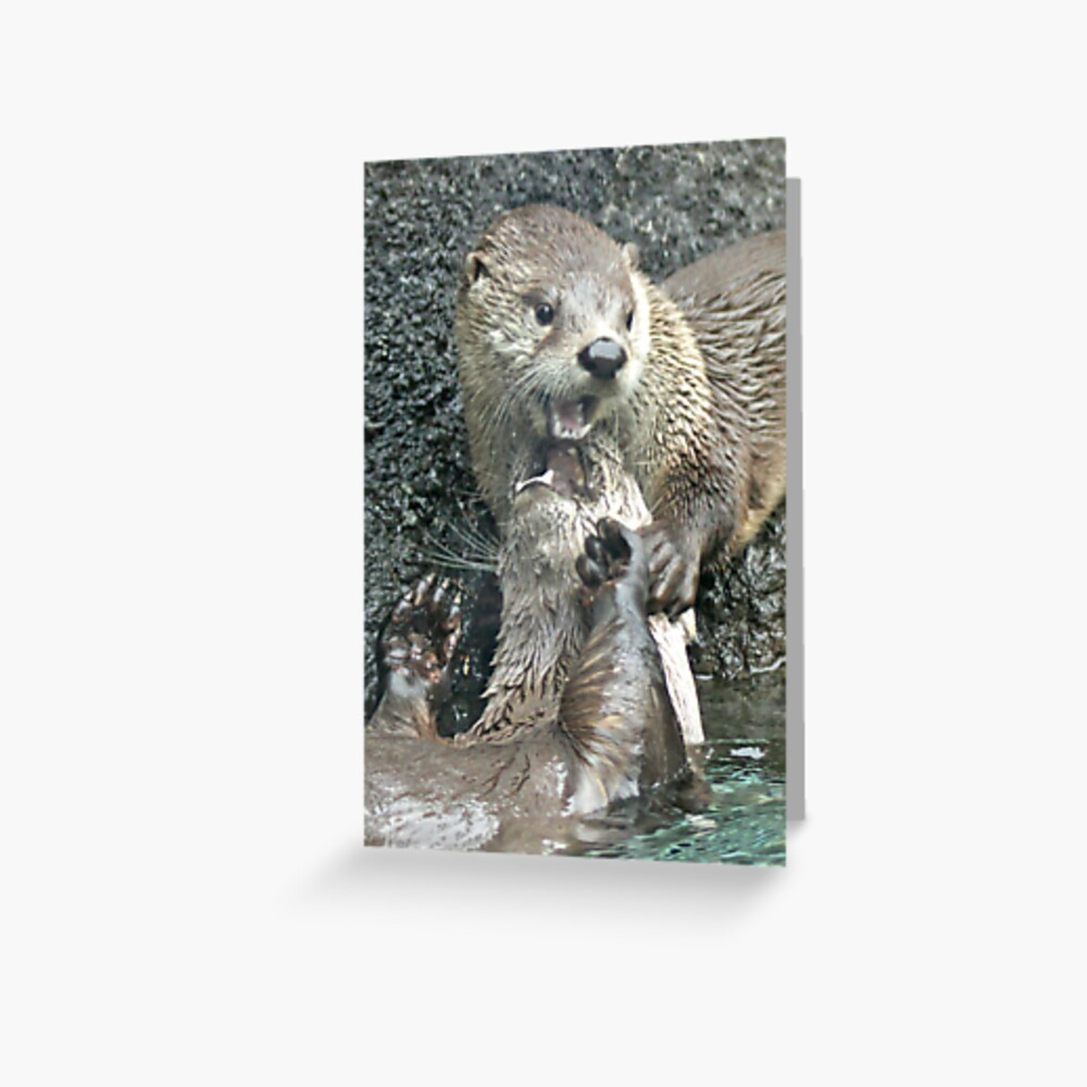 The joy of otter Greeting Card