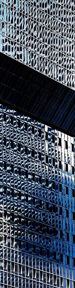 Denver reflection 12 by luvdusty
