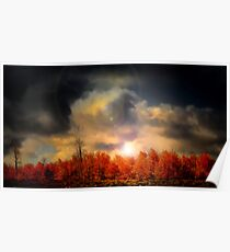 Aspens in the Steens Poster