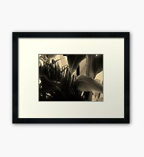 Shapes and Textures of Leaves Framed Print