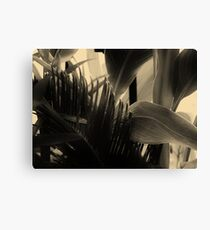 Shapes and Textures of Leaves Canvas Print