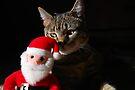 Better Watch Your Back Santa! by jodi payne