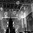 Tree Lights At the Mall by Jane Neill-Hancock