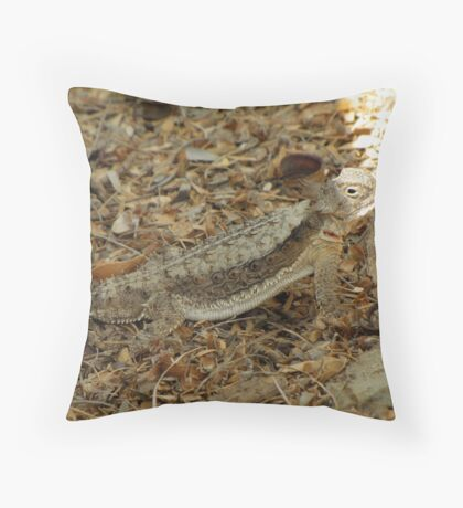 Horned Lizard ~ Desert Throw Pillow
