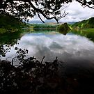 Reflections Of Rydal Water by John Hare