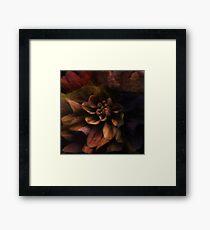 Dark Flower Framed Print