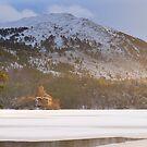 Winter Glow II at Loch an Eilein by Christopher Thomson