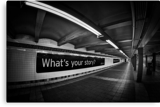 What's Your Story? by Evelina Kremsdorf
