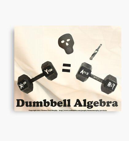 Dumbbell Algebra  Metal Print