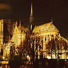 Notre_Dame(noel2011) by Mike Dineen
