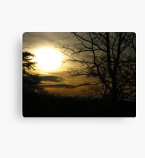 Masterpiece Of The Day ! Canvas Print