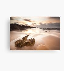 Another Planet Metal Print