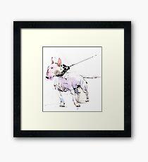 English Bull Terrier Framed Print