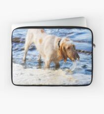 Orange and White Italian Spinone Dog in Action Laptop Sleeve