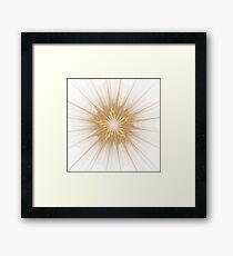 Gold Framed Print