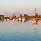 Impressions of Summer - Sailing Home at Sundown by Georgia Mizuleva
