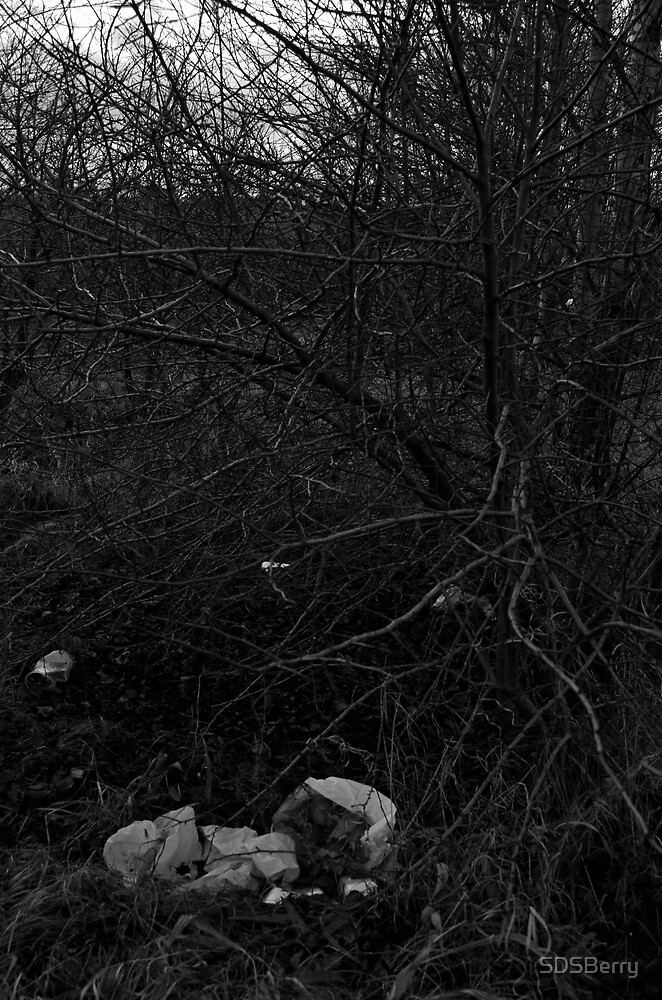 Litter in Bushes by SDSBerry