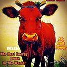 Red Bull - for Bull Strength! (please see description) by Kanages Ramesh