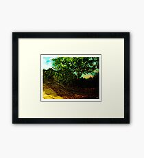Fallow Field, Water of Leith: Halftone version  Framed Print