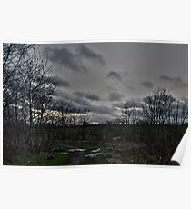 Litter on Country Path at Sunset Poster