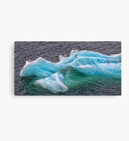 Frozen Landing Pad Canvas Print