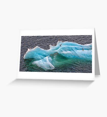 Frozen Landing Pad Greeting Card