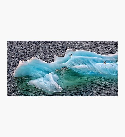 Frozen Landing Pad Photographic Print