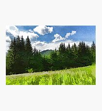 Impressions of Mountains and Meadows and Trees Photographic Print