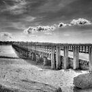 Powder Point Bridge by Jack DiMaio