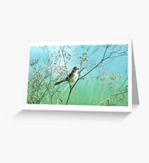 A bird Greeting Card