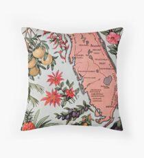 Vintage Map of Florida (1917) Throw Pillow