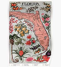 Póster Mapa vintage de Florida (1917)