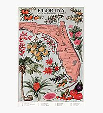 Vintage Map of Florida (1917) Photographic Print