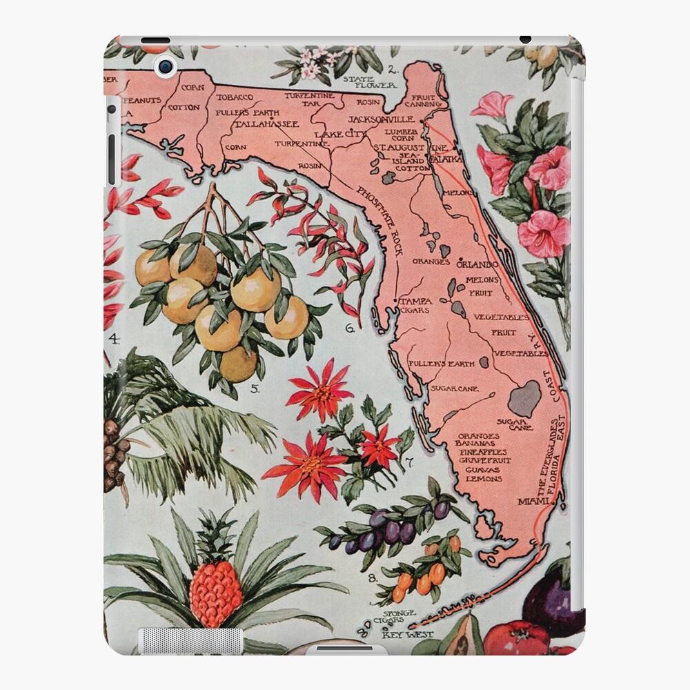 Vintage Karte von Florida (1917) iPad-Hülle & Skin