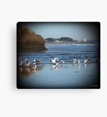 Dancing Sea Gulls 2 Canvas Print