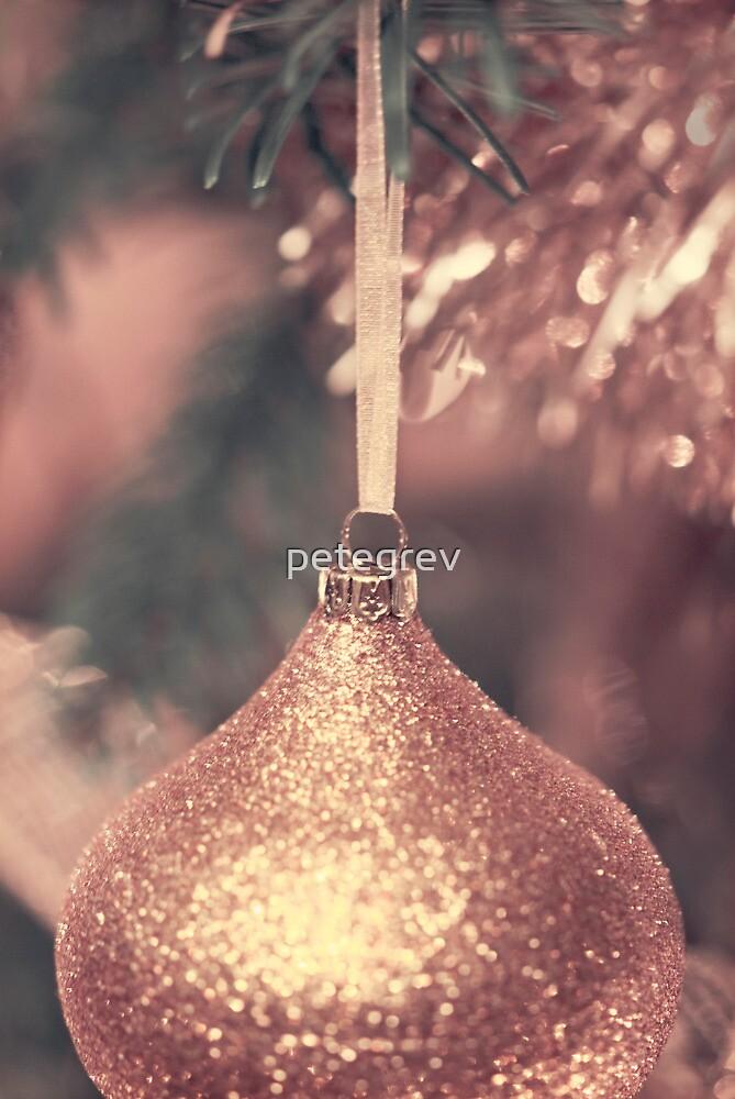 Day 162 - 19th December 2011 by petegrev