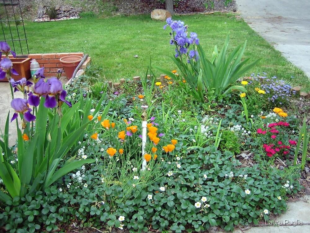 Garden of Delight by Laura Puglia