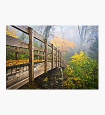 Tanawha Trail Foot Bridge - Rough Ridge Autumn Foliage NC Photographic Print