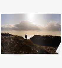 Bannow Beach in winter light, County Wexford, Ireland Poster