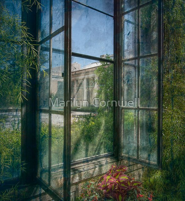 The Longing View by Marilyn Cornwell